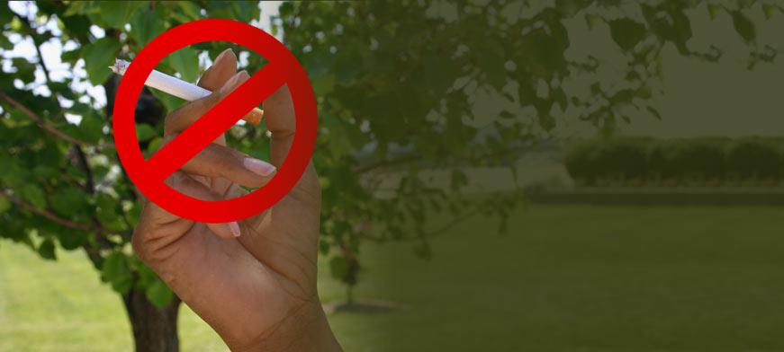 South Suburban College Becomes Smoke-Free