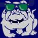 Bulldog in sunglasses.