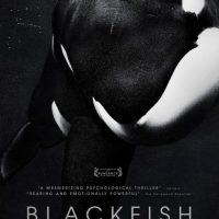 """Black Fish"" movie poster"