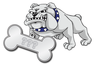 Bulldog with dogtag