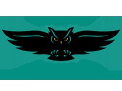 Oakton Community College Owls logo