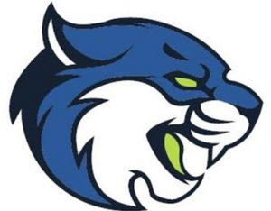 Bryant and Stratton College Bobcats sports logo