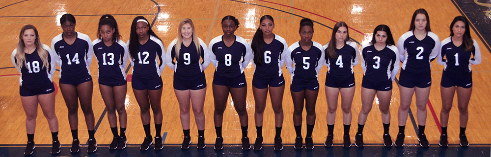 Photo of the 2018 SSC Volleyball team