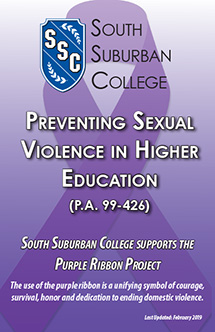 Preventing Sexual Violence 2019 book cover